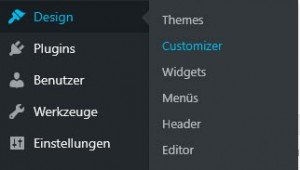 WordPress Customizer - Markus Zarte